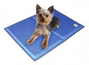 Dogs love Gel mat