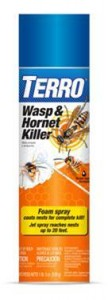 terro wasp and hornet spray