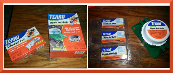 terro liquid ant bait review