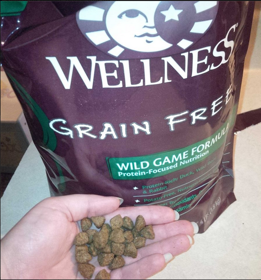 Wellness Core Dog Food With Best Picture Collections