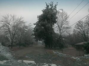 IMAG0944