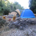 Creative Camping Ideas to Educate the Kids to Respect Nature